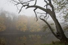 Raritan River in autumn